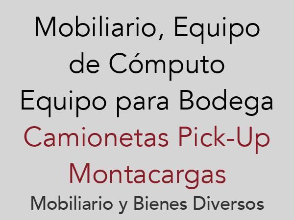 Camionetas Pick-up, Montacargas, Mobiliario